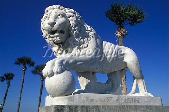 #StAugustine #Lion #Florida