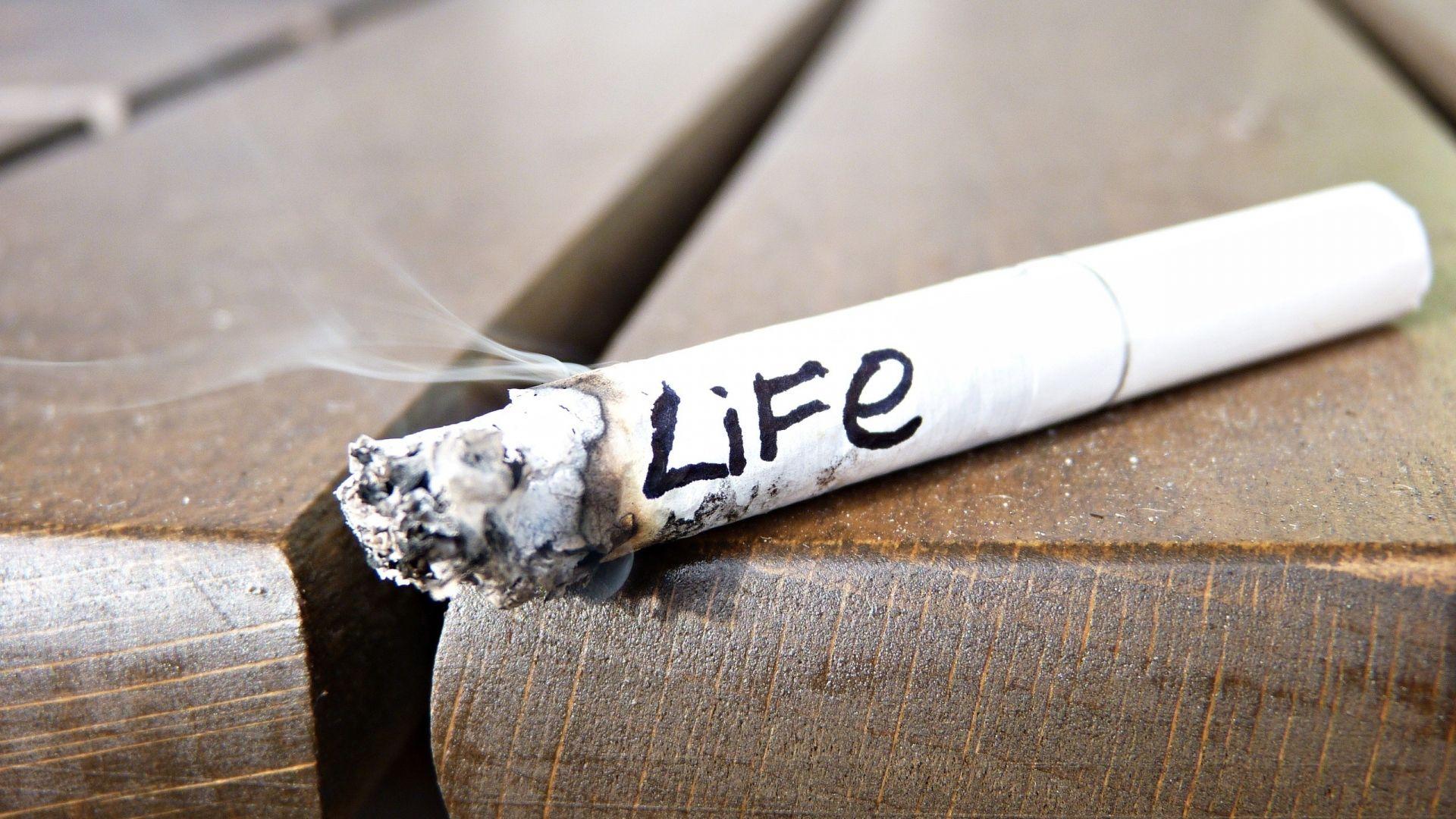 Pin On Alkohol And Smoke