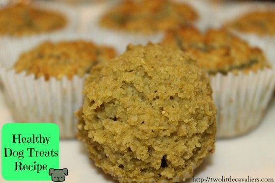 Green Dog Treats Recipe Low Calorie High Protein Green Bean Or