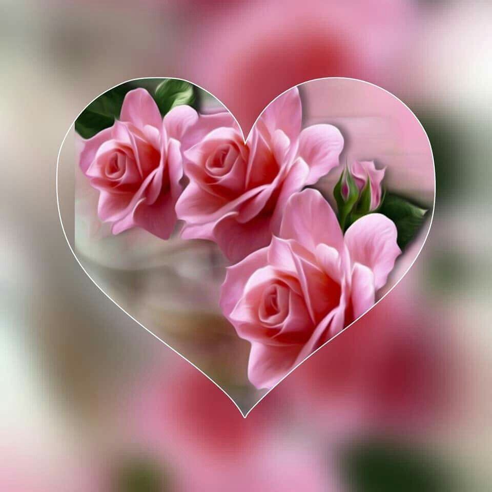 Pin By Videos Play Plesie On Folate Greens Floral Beautiful Flowers Beautiful Roses Rose