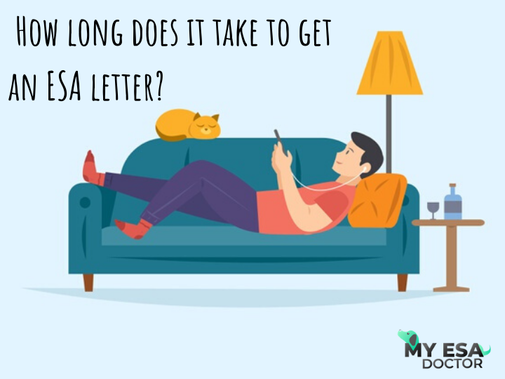 An ESA letter can help you experience living with your pet