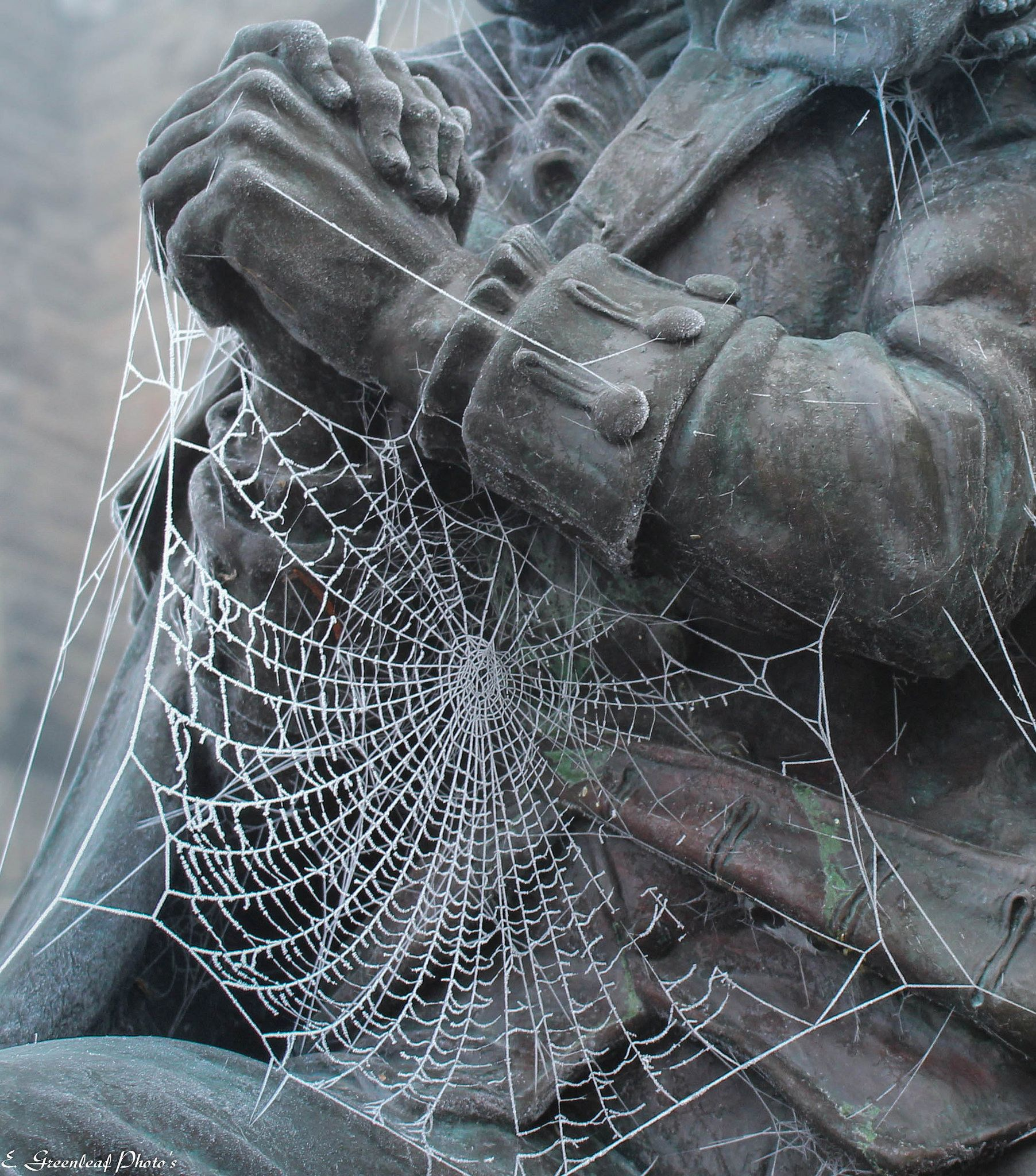 Frozen Cobwebs on George Washington kneeling statue at the Old Capitol Building in Olympia Washington & Frozen Cobwebs on George Washington kneeling statue at the Old ... pezcame.com