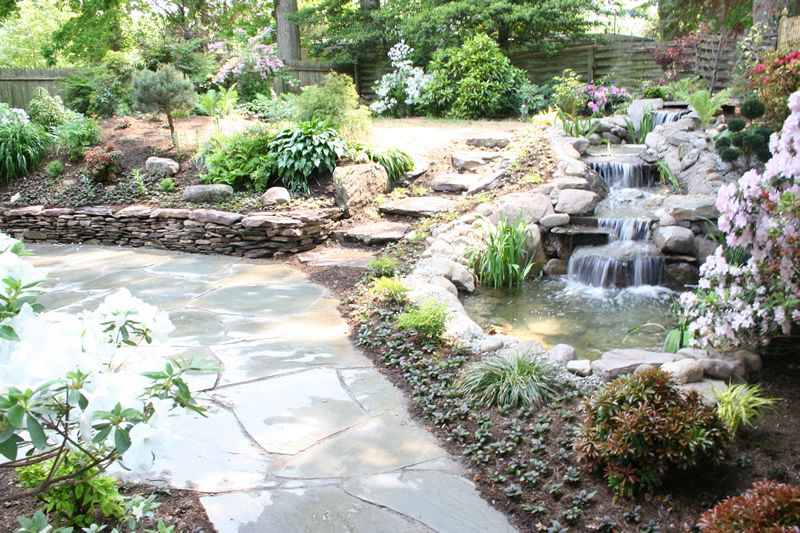 Natural koi pond with waterfalls plantings flagstone for Stone koi pond