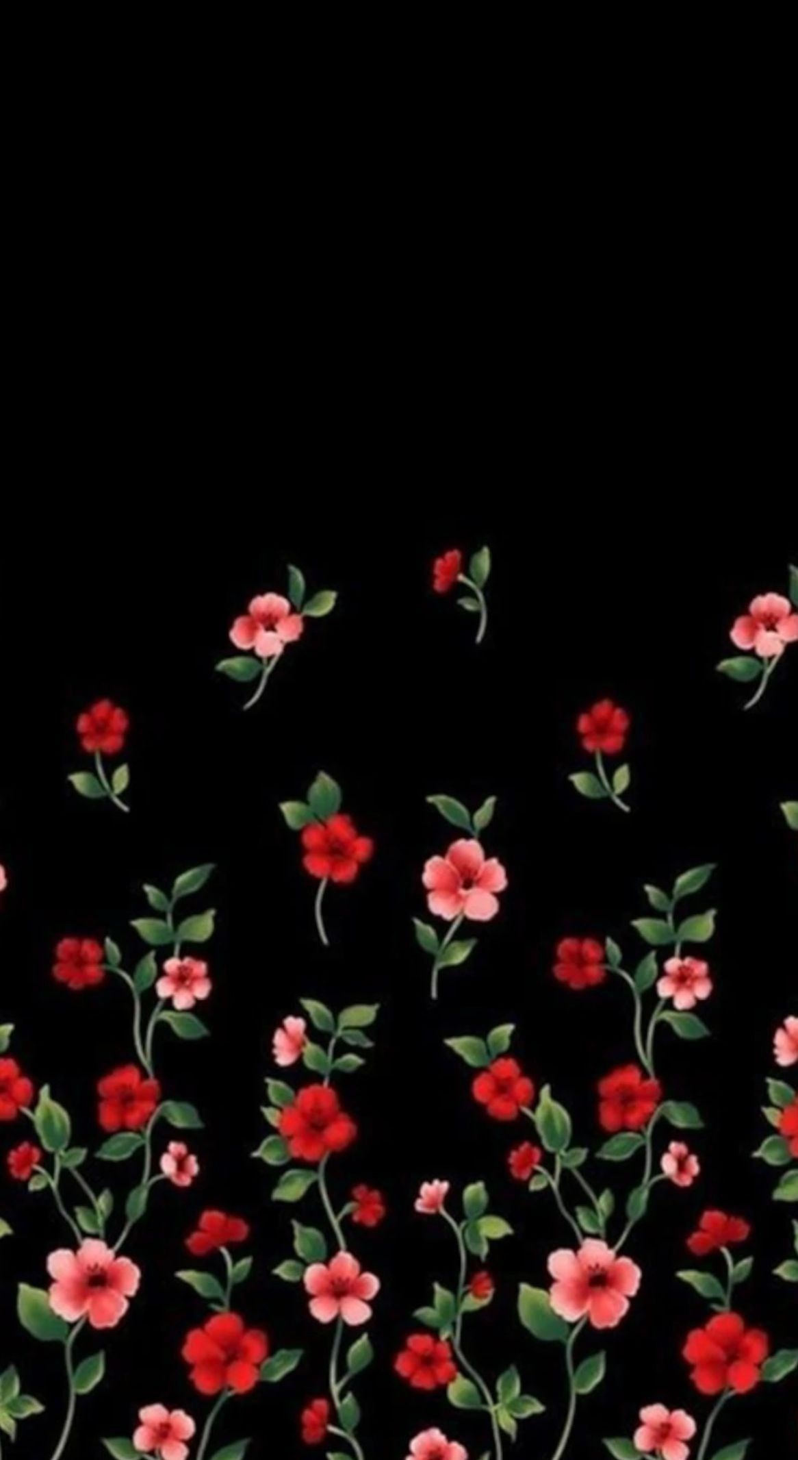 Image Result For Red And Black Flower Black Flowers Wallpaper Flowery Wallpaper Floral Wallpaper Phone