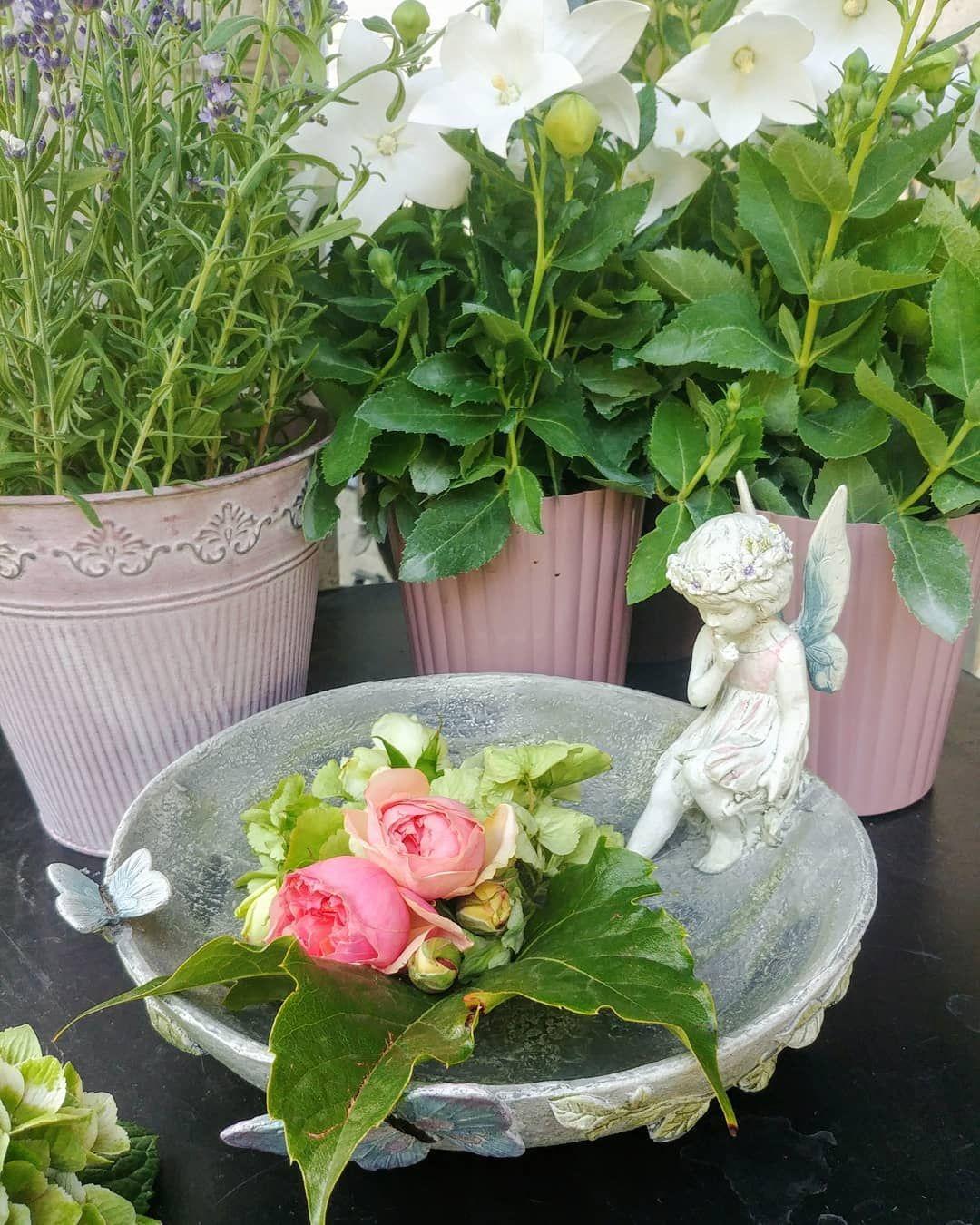 Wir Wunschen Euch Einen Schonen Sonntag Geniesst Die Blumen Wie Diese Fee Wohnaccessoires Sommerdeko Garten Garten Deko Sommerdeko Deko Ideen