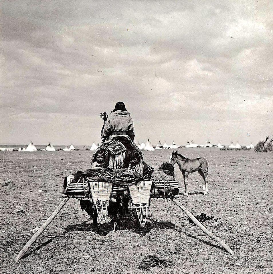 Montana Native Plants: Arriving At Blackfeet Dance. Montana. Early 1900s. Photo