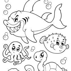 coloring book happy sea life animals | malvorlagen