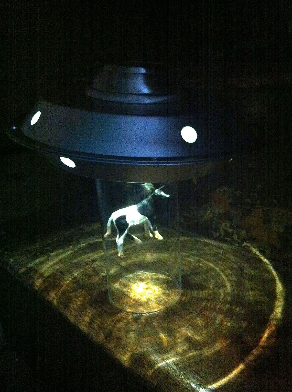 UFO Abduction Night Light Lamp Alien Solar Roswell Vintage Holstein Cow  Vintage http://