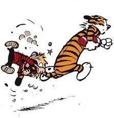 Pin On Calvin And Hobbes Da