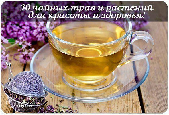 царский чай кипрей крапива
