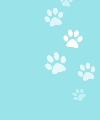 Dog Cute Backgrounds | ~ Beautiful & Adorable Pictures ...