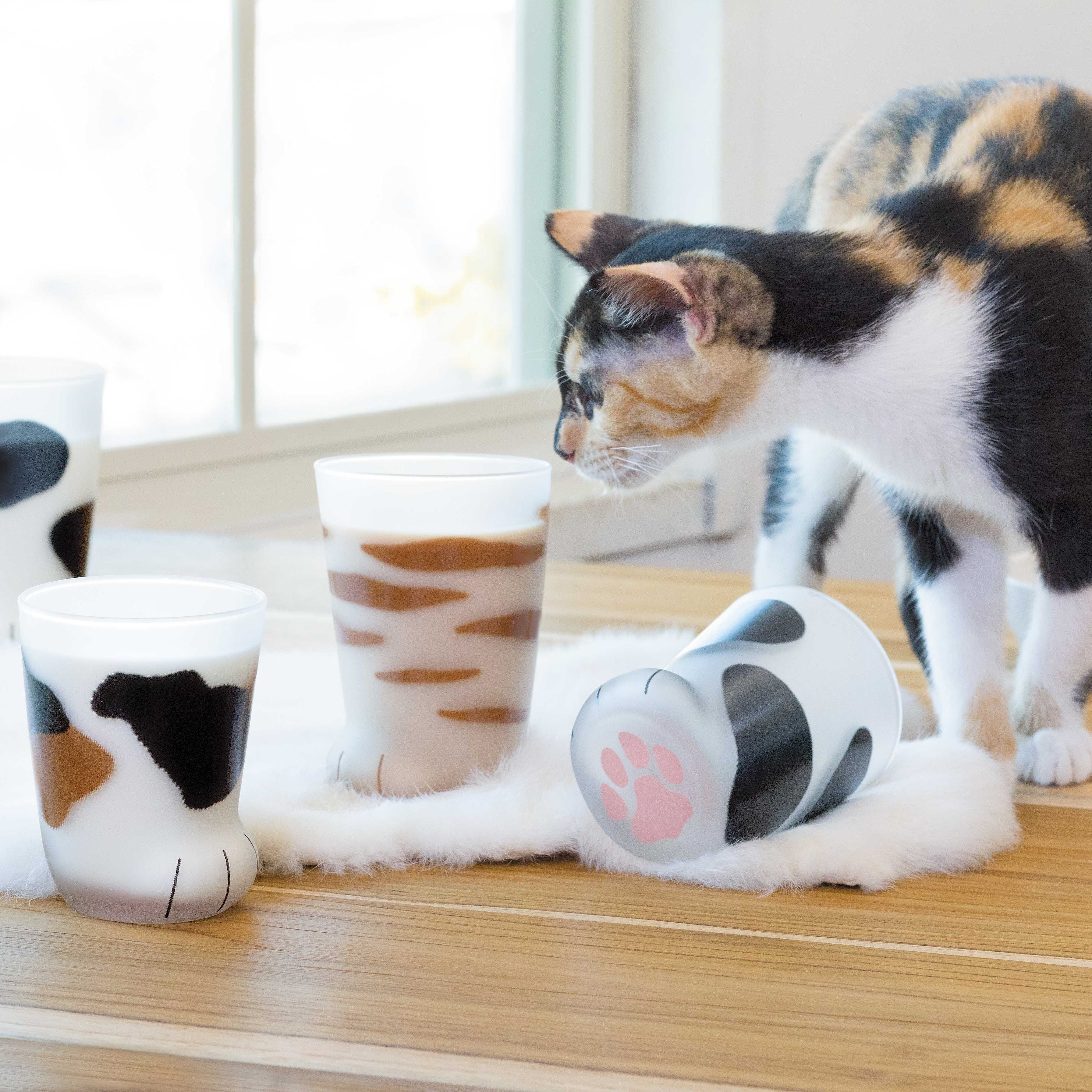 Cat Paw Cup Cat Paws Like A Cat Cats