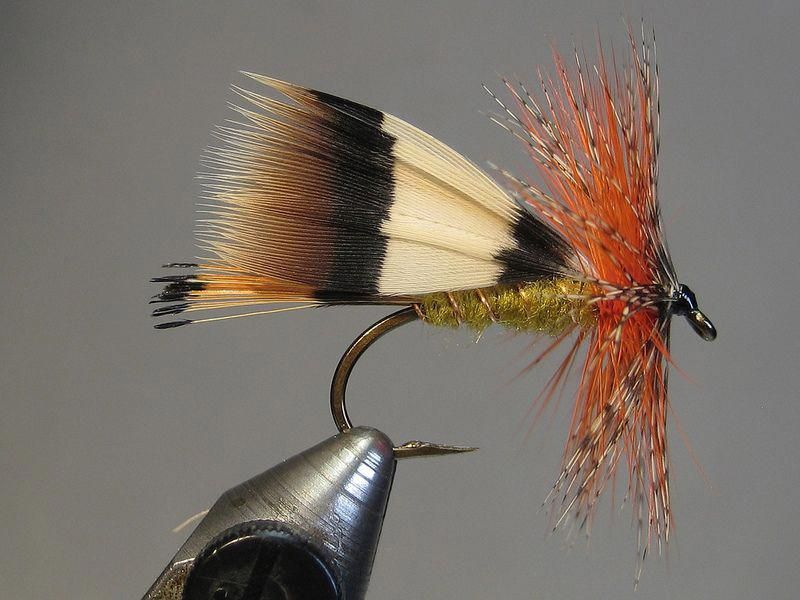 Birchdolt's Hopper beginnerfishing (With images) Fly