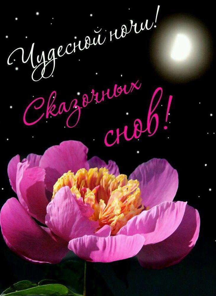 Спокойной ночи сладких снов картинки с цветами