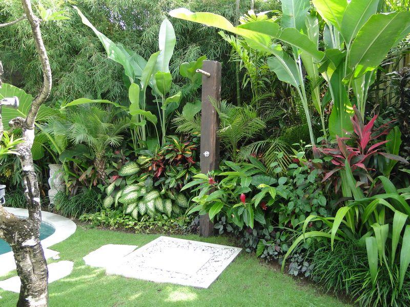 Elang villa bali bali landscape company gardening for Pool garden plants