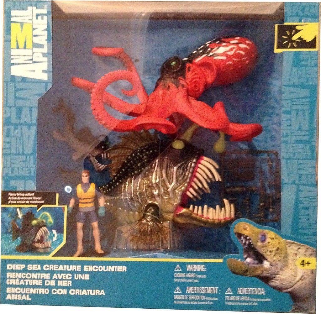 Animal Deep Sea Creature Encounter Deep sea