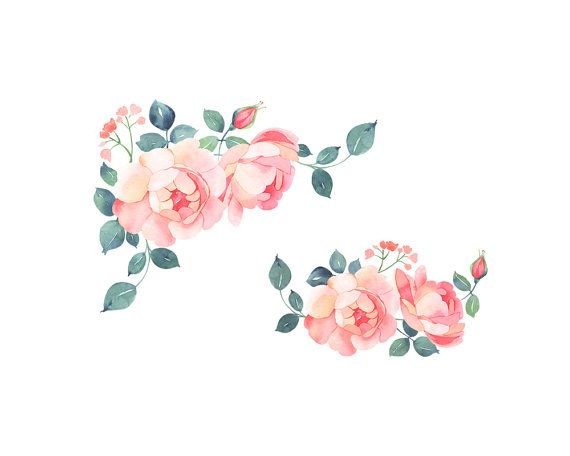 Romatic Roses Watercolor Clip Art Soft Pink Roses Bouquet Rose