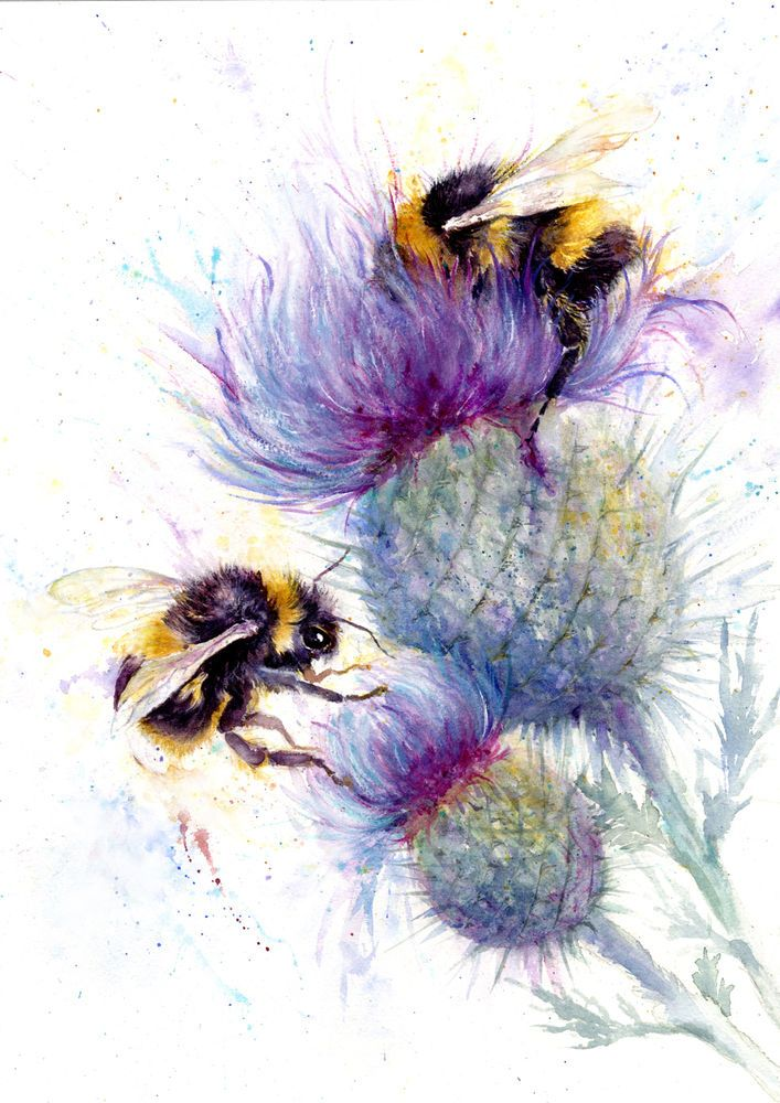 Print Original Watercolour Wildlife,Animal,Art, Gift Card Blossom and Bee