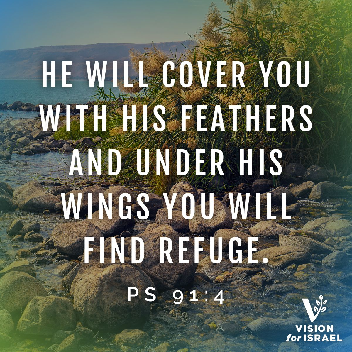 Take Refuge In God S Love And God Will Show You The Way N Bibleverse Inspirationalquote God Love Scriptures Scripture Pictures Scripture Of The Day