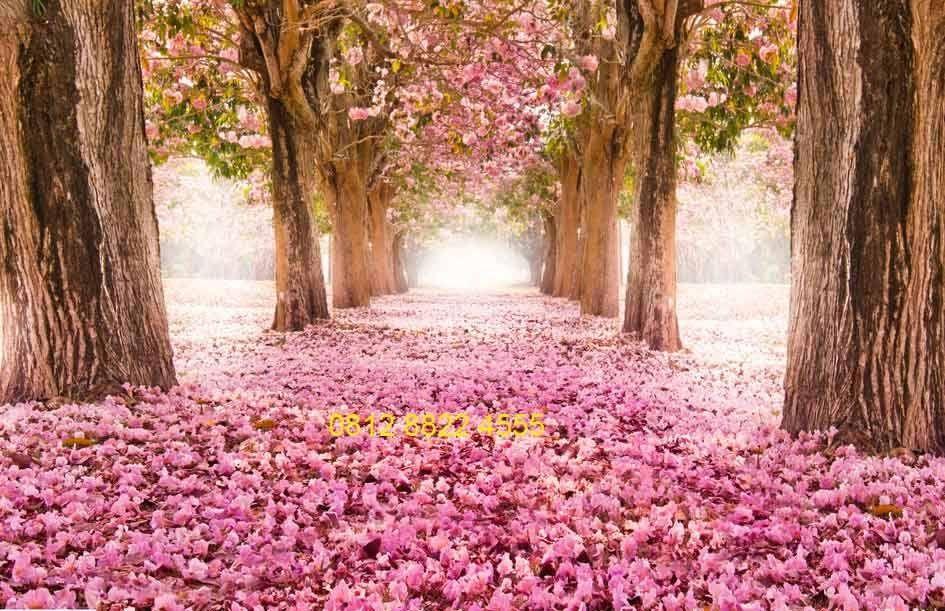 Gambar Atau Lukisan Pemandangan Alam Gambar Atau Lukisan Pemandangan Alam Gambar Terunik Di Dunia Gambar Unikhttp Pema Pemandangan Wallpaper Bunga Mawar Ungu