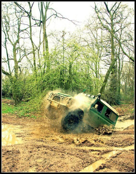 Land Rover, off roader, roaring, dirt, race, wood, action, exploring, trees, dust, wheels, transportation, photograph, photo
