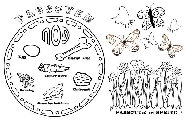 Free download passover activity sheets digging with for Seder coloring pages