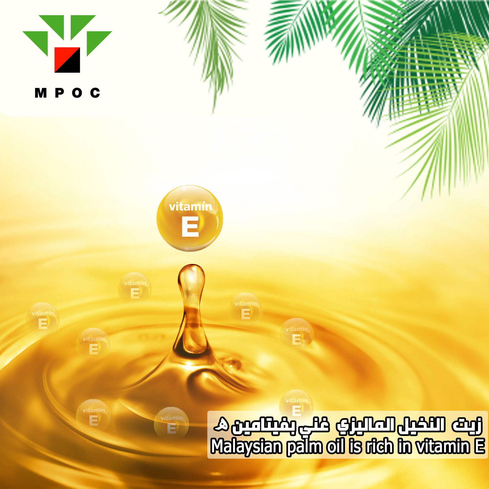فوائد زيت النخيل الماليزي Palm Oil Oils Facebook Sign Up