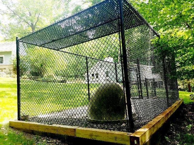 Residential Chain Link Dog Kennel Enclosure Fencing Buffalo Ny Wny