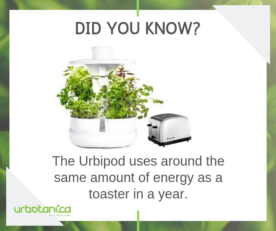 Urbipod Indoor Garden Herbs
