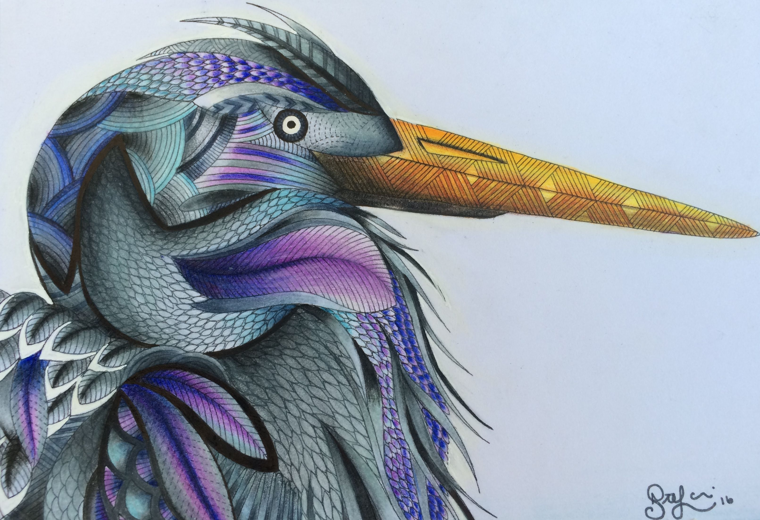 Heron From Millie Marotta S Animal Kingdom Colouring Book Adultcolou Millie Marotta Animal Kingdom Millie Marotta Coloring Book Animal Kingdom Colouring Book