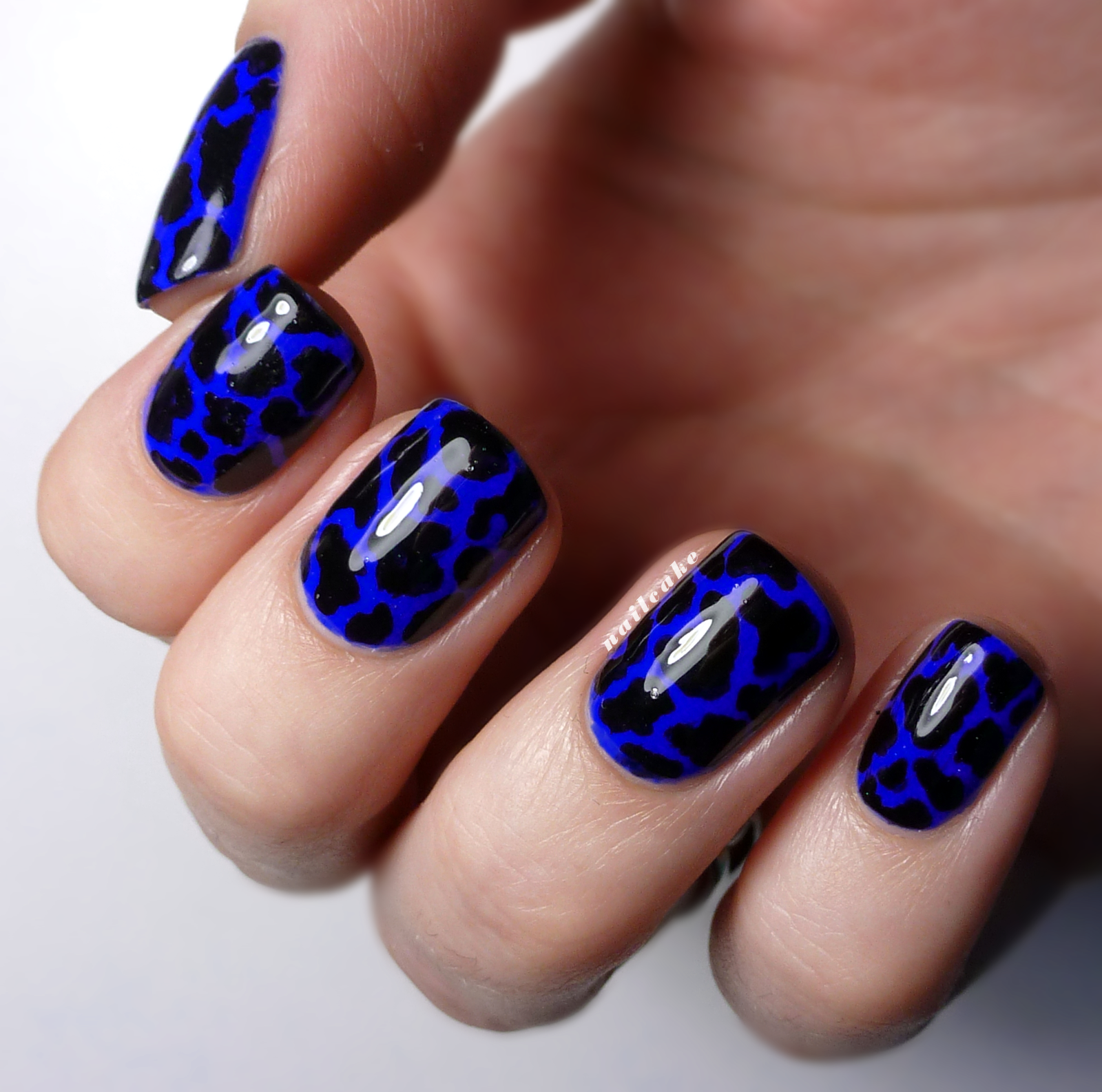 Nail Cake: Blue & Black Splodges/Cow Print | Nail Art | Nailss ...