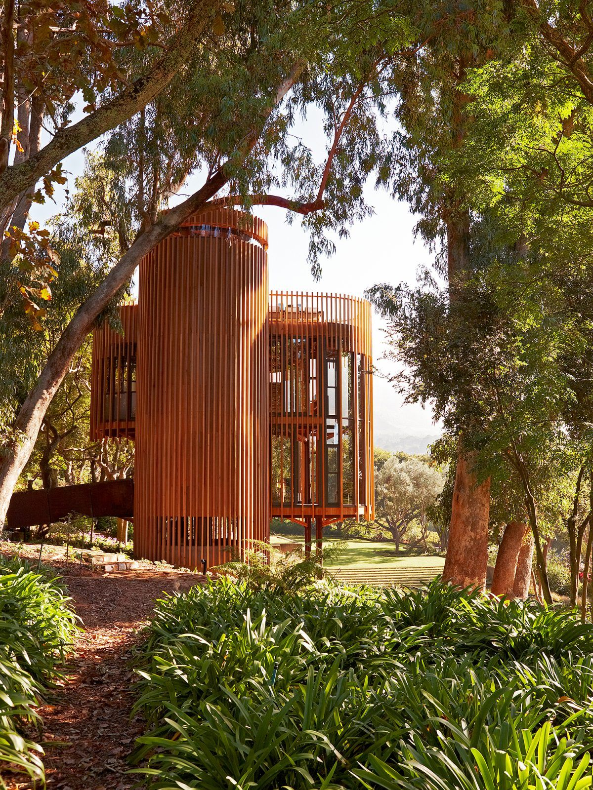 This treehouse in South Africa will blow your mind in 2020