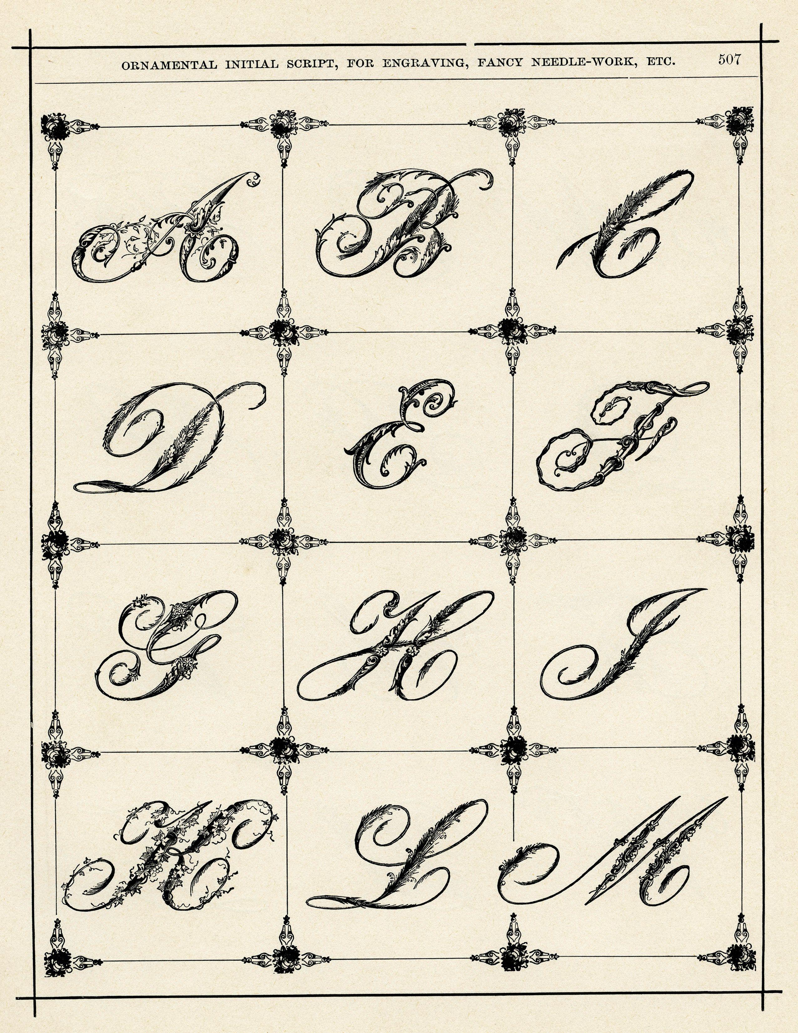 Ornamental Alphabets Lettering alphabet