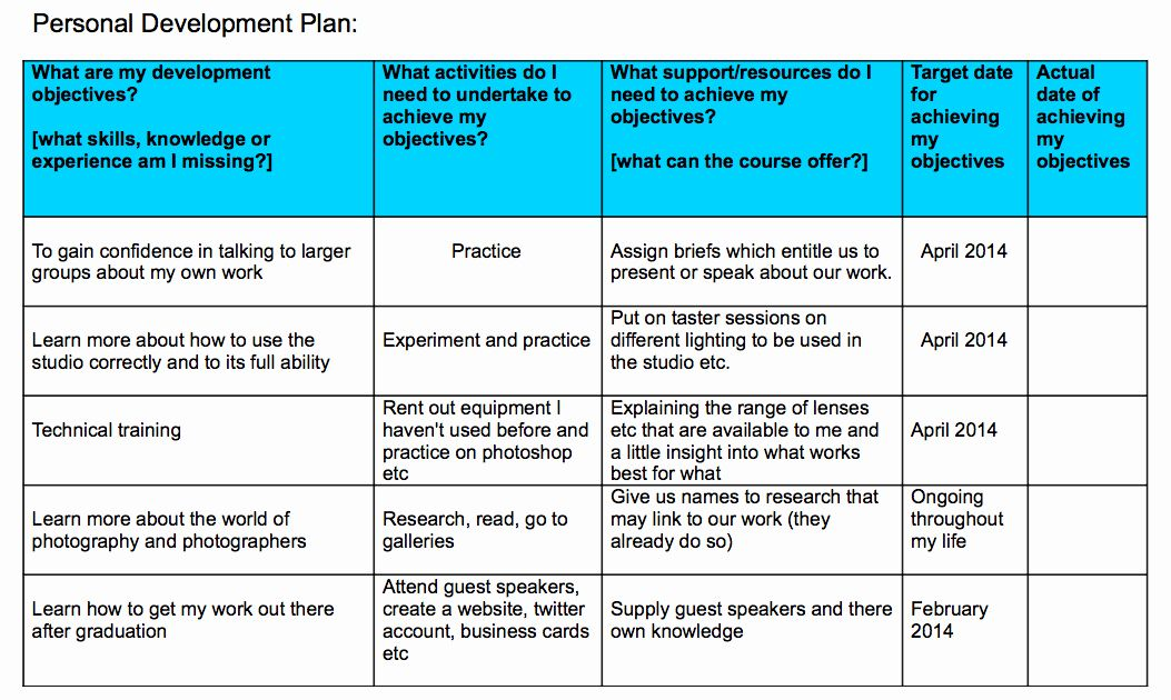 30 Individual Development Plan Sample in 2020 Personal