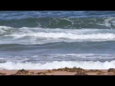 Sylvie Paquette • Marine (poème d'Anne Hébert) • Images de Robert Campeau - YouTube