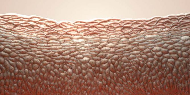Electrified Artificial Skin Can Feel Exactly Where It Is Touched Bed Pillows Throw Pillows Pillows