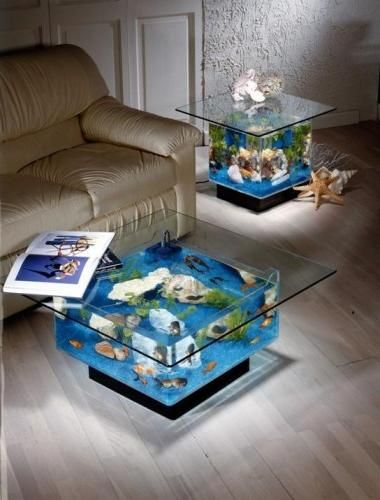 Aquarium Furniture is my new obsession & not that expensive but i hate maintaining fish tho!
