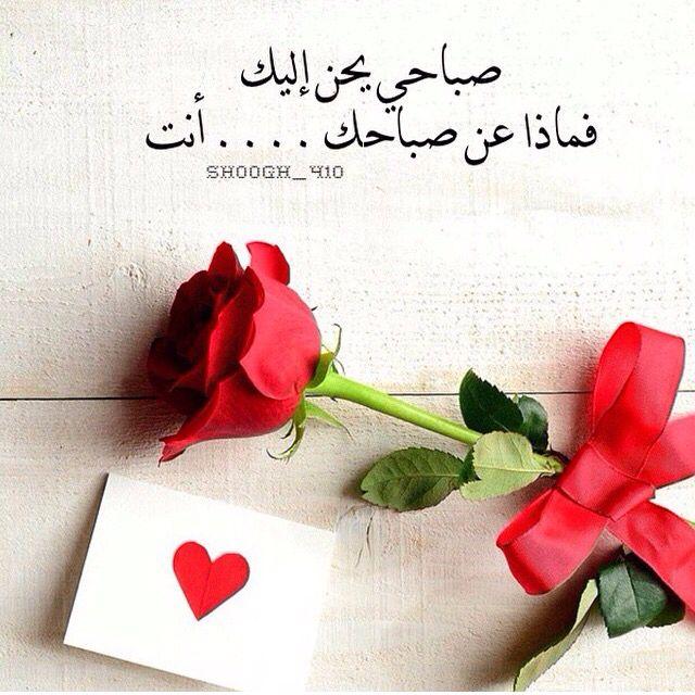 Desertrose صباحي يحن إليك Love Words Morning Love Quotes Beautiful Arabic Words