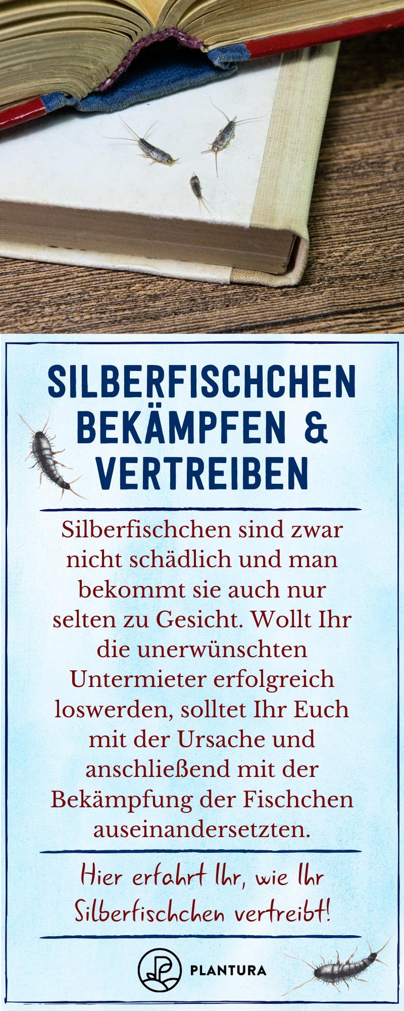 Silberfischchen Bekampfen Erfolgreich Vertreiben Plantura In 2020 Silberfische Bekampfen Silberfische Pflanzenschutz