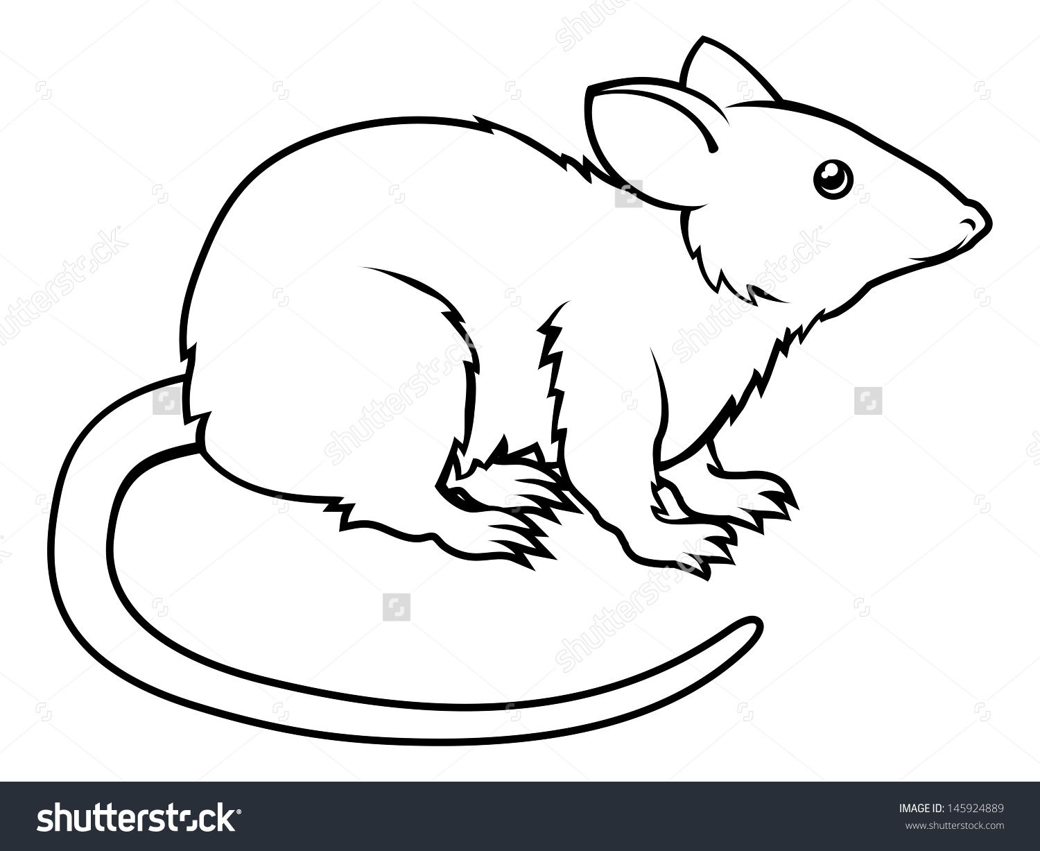 Of A Stylised Rat Perhaps Tattoo  145924889