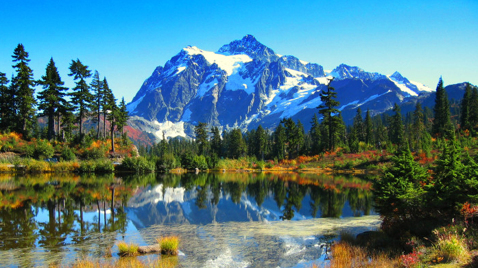 The Fall Foliage At These 10 Places In Washington Is Stunningly Beautiful Scenery Forest Mountain Nature Quotes Adventure