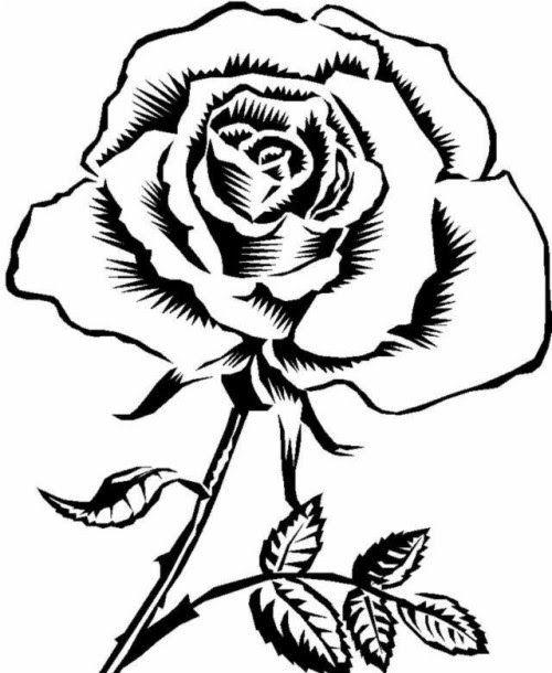 Gambar Wa Hitam Putih : gambar, hitam, putih, Gambar, Wallpaper, Hitam, Putih-, Bunga, Wallpapers, Backgrounds, Download, Mawar,, Sketsa, Bunga,
