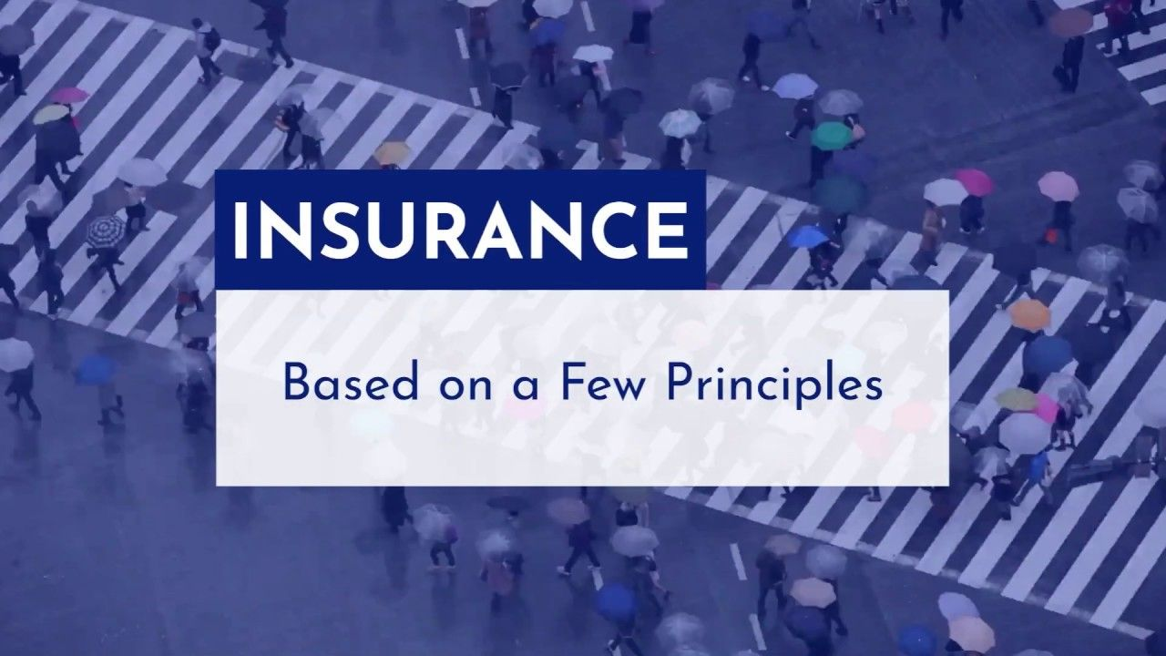 Insurance Principles Part 1 In 2020 Health Insurance Companies