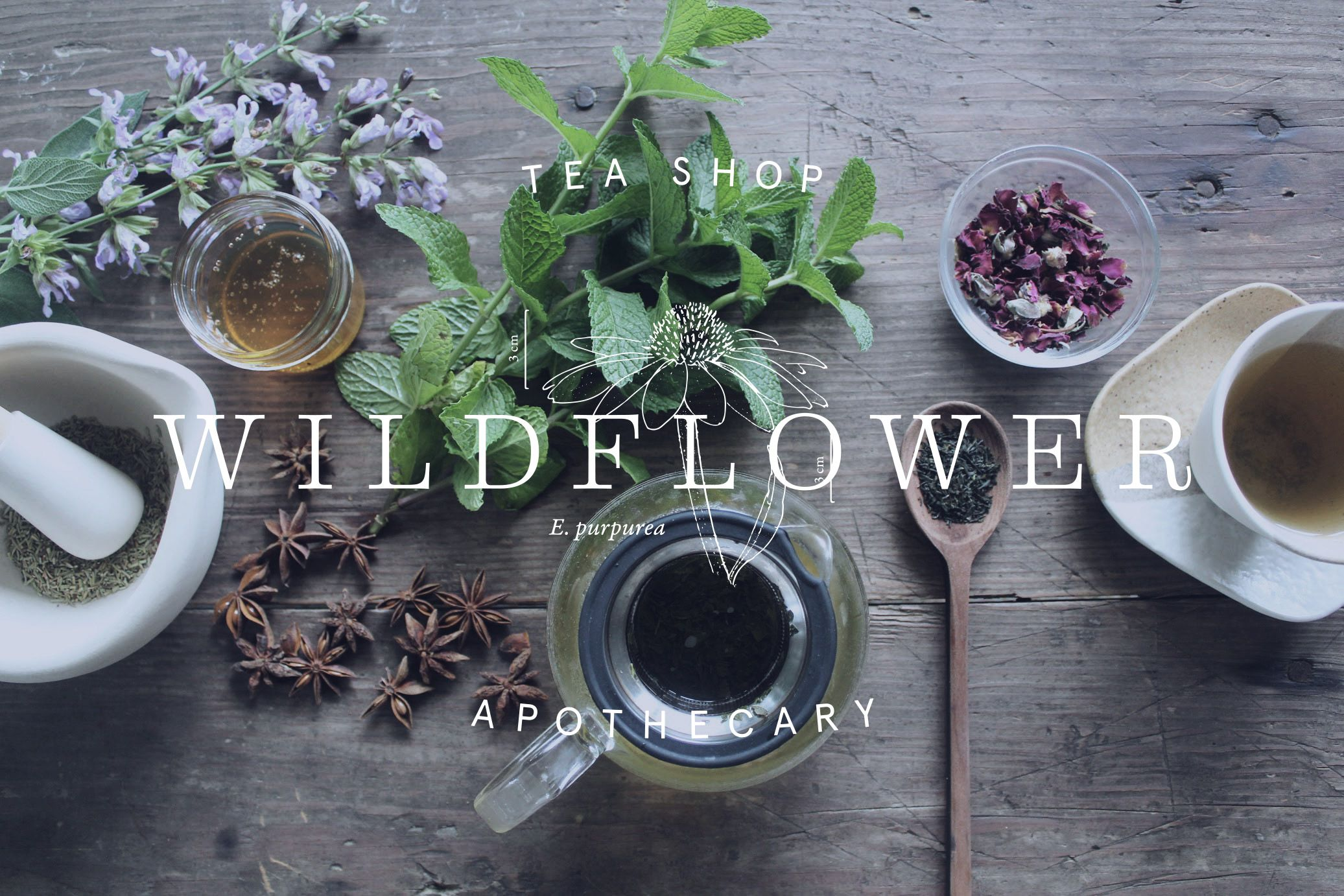 Wildflower herbal & tea shop in Chattanooga, TN Wild