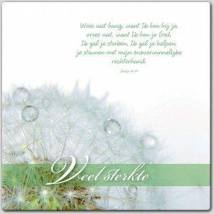 Jesaja 41:10  Wees niet bang, want ik ben bij je, vrees niet, want ik ben je God. Ik zal je sterken, ik zal je helpen, je steunen met mijn onoverwinnelijke rechterhand.