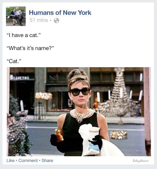 Image result for tv characters humans of new york