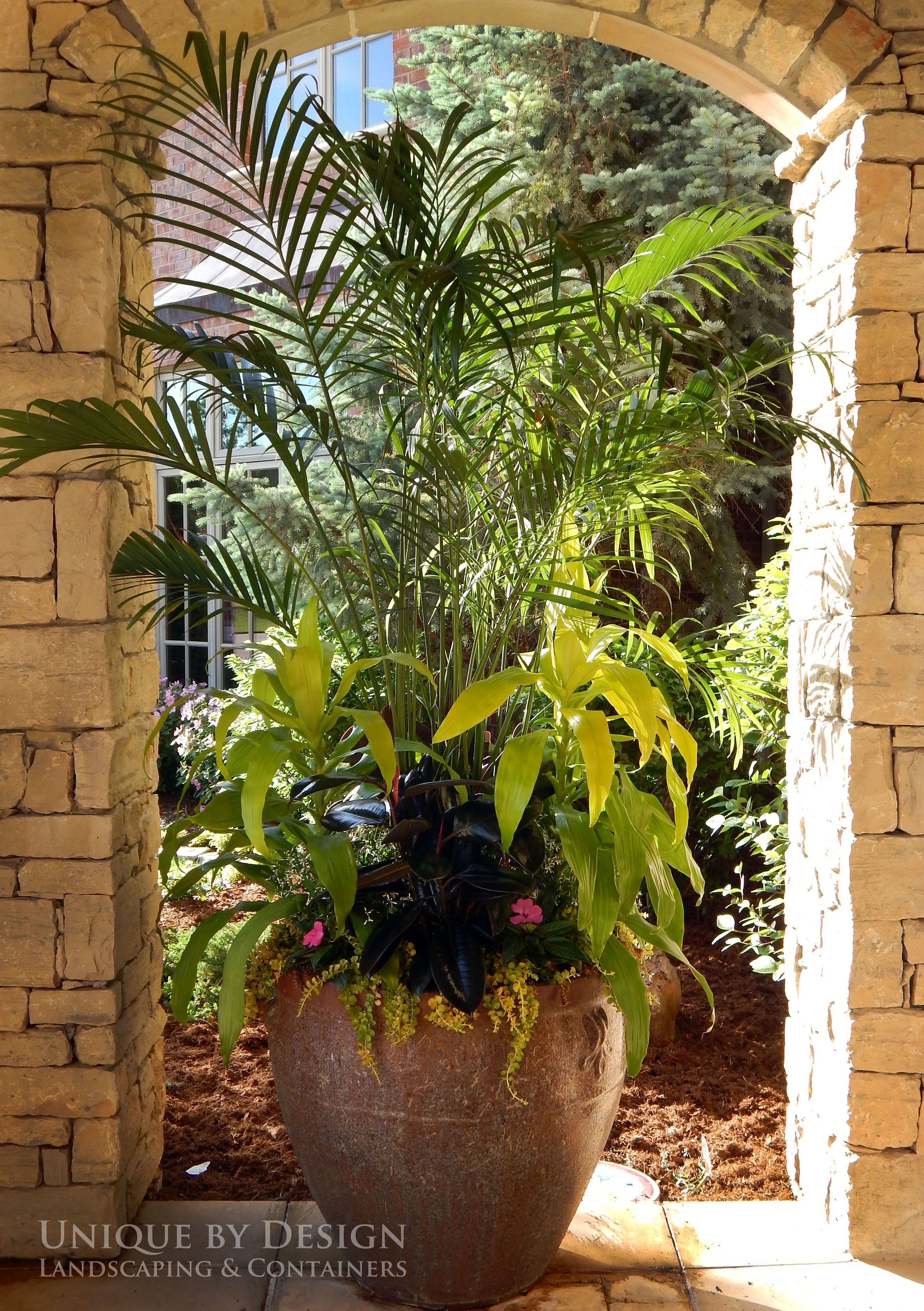 Potted Plants And The Necessary Spring Care: Unique By Design L Helen Weis