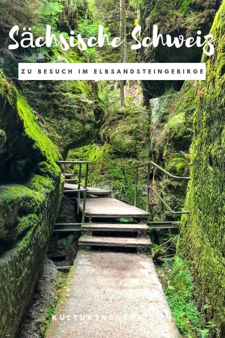 Naturparadies Sächsische Schweiz - Ein Besuch im Elbsandsteingebirge #holidaytrip