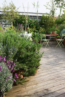 integrating garden borders and decking