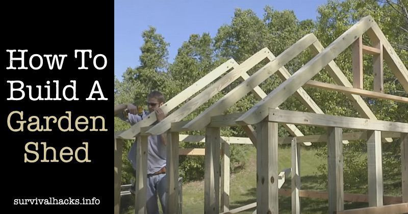 Pin by Shed Kit Designs on Build Your Own Shed Plans
